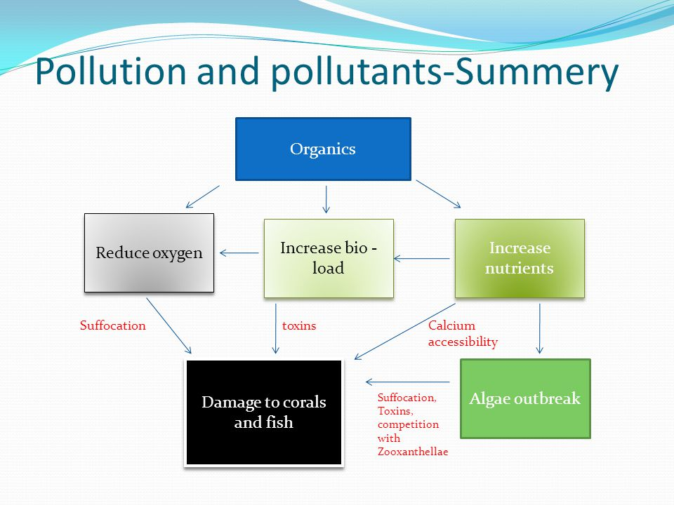 Pollution and pollutants-Summery