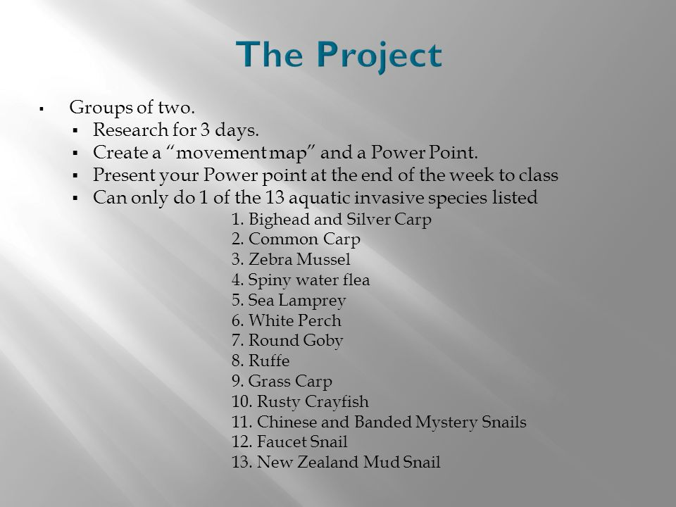 The Project Groups of two. Research for 3 days.