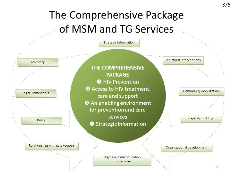 The Comprehensive Package of MSM and TG Services