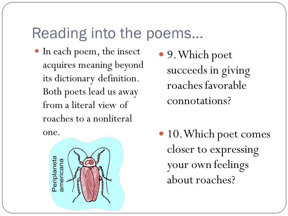 Reading into the poems…