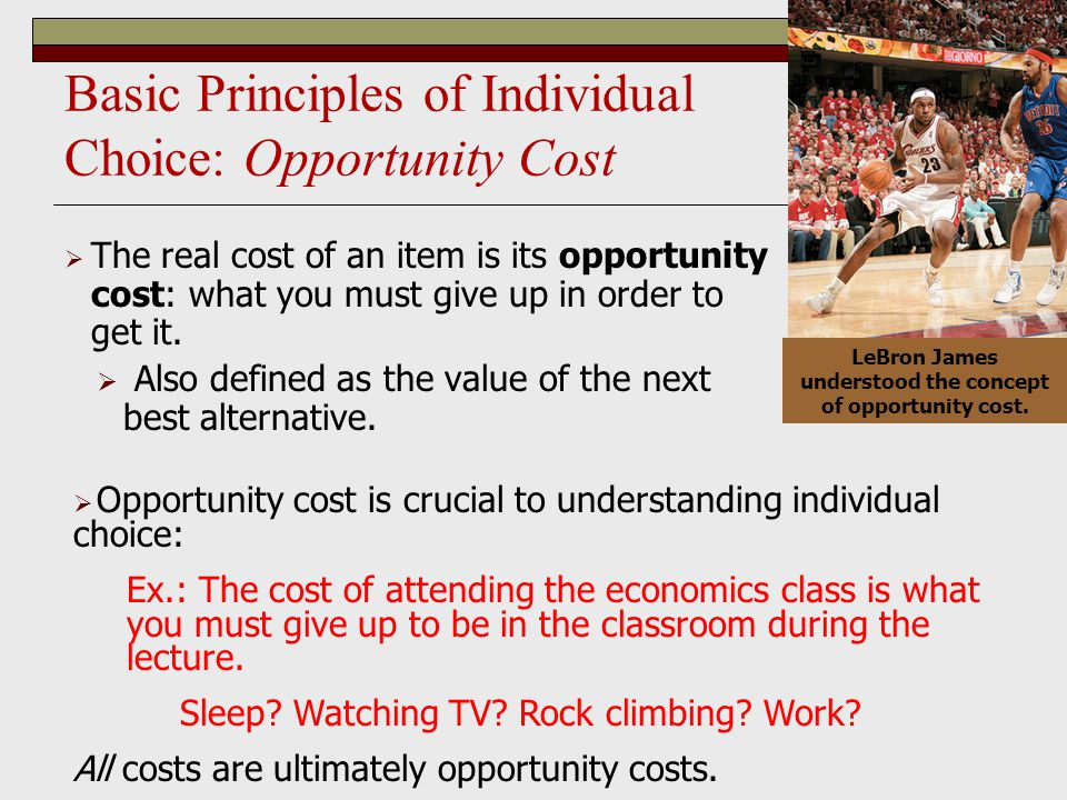 Basic Principles of Individual Choice: Opportunity Cost