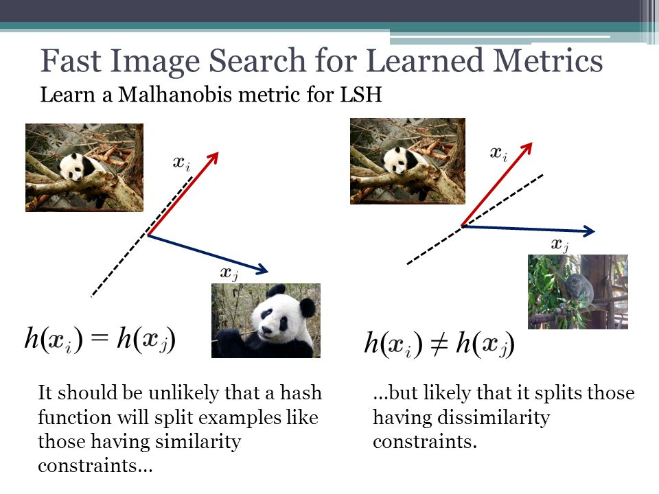 Fast Image Search for Learned Metrics