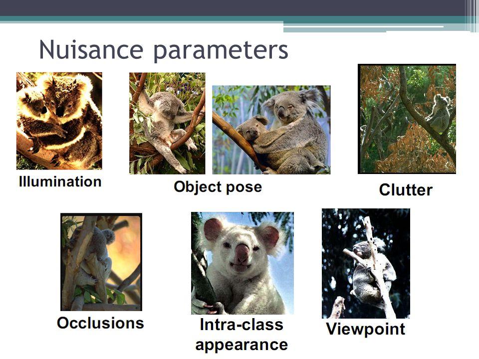 Nuisance parameters