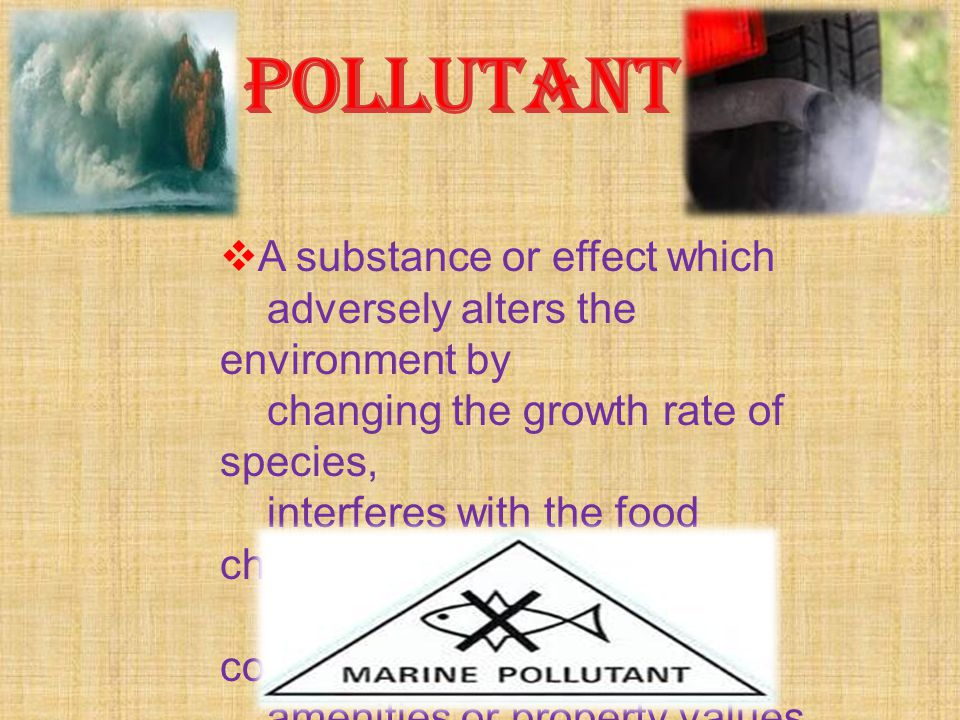 POLLUTANT A substance or effect which
