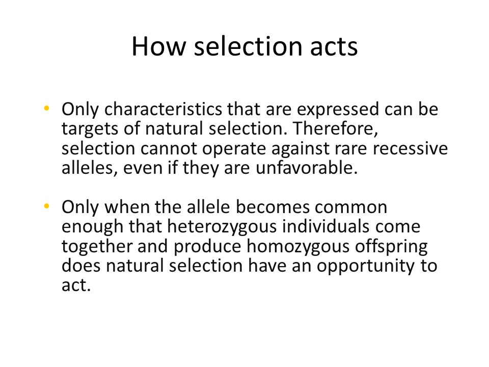 Natural Selection Acts Directly On What
