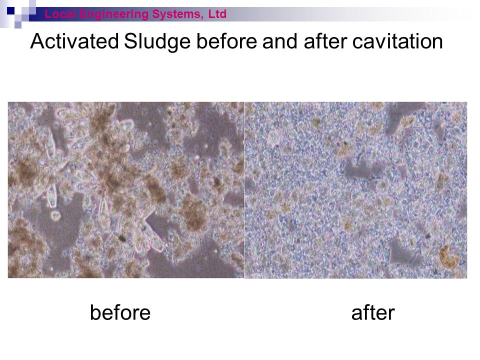 Activated Sludge before and after cavitation