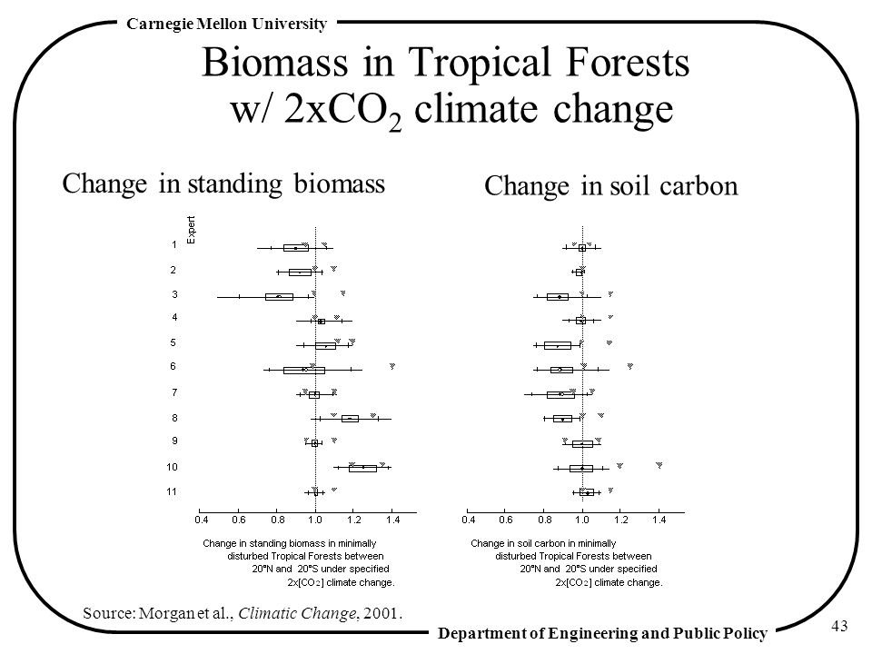 Biomass in Tropical Forests w/ 2xCO2 climate change