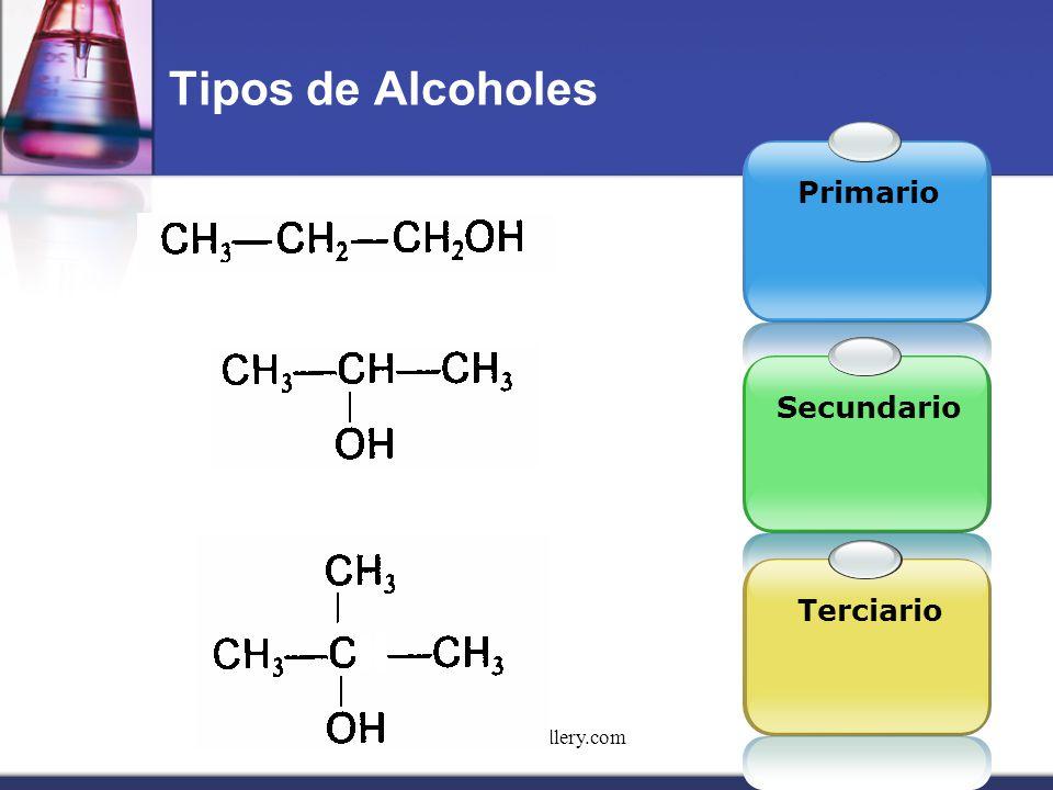 Tipos de Alcoholes Primario Secundario Terciario www.themegallery.com