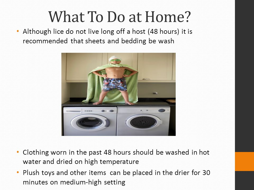 What To Do at Home Although lice do not live long off a host (48 hours) it is recommended that sheets and bedding be wash.