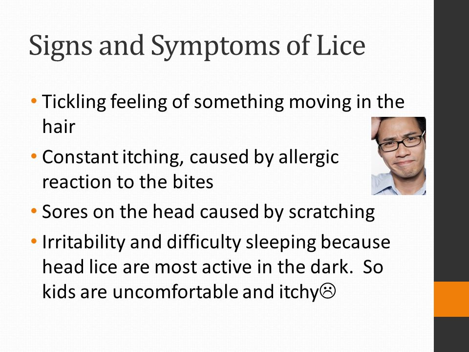 Signs and Symptoms of Lice