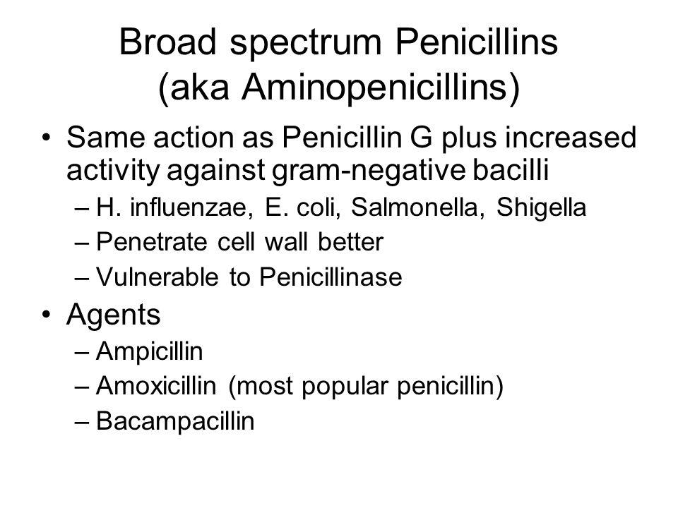 Broad spectrum Penicillins (aka Aminopenicillins)