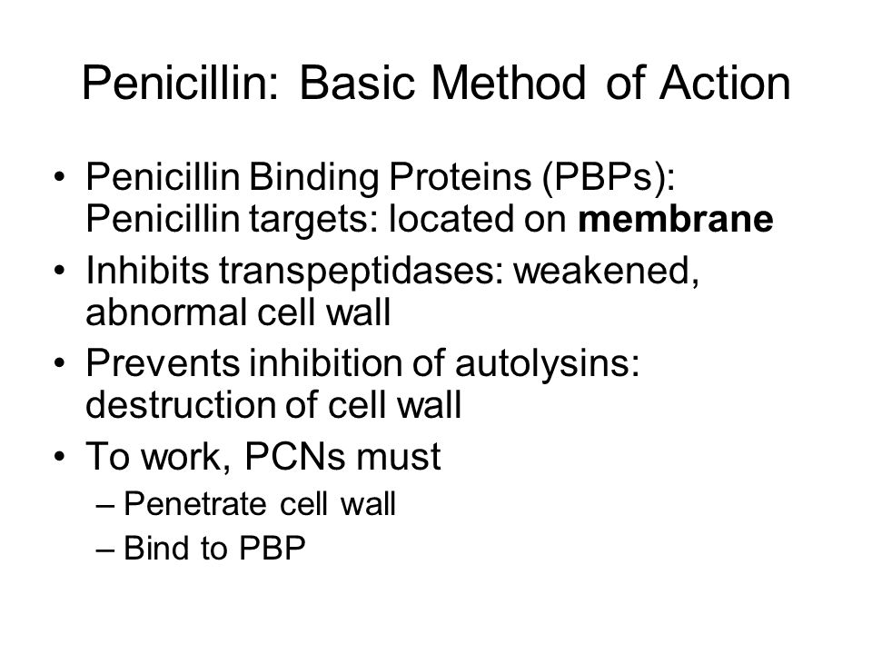 Penicillin: Basic Method of Action