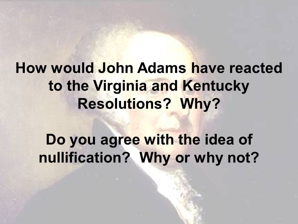Do you agree with the idea of nullification Why or why not
