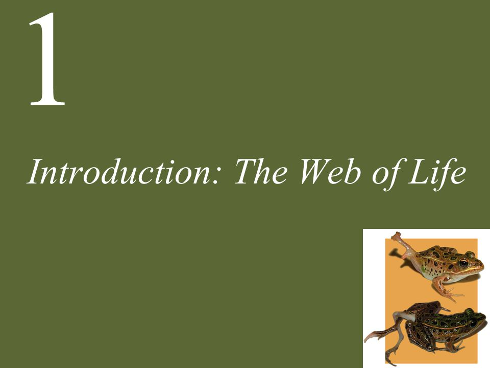 Introduction: The Web of Life