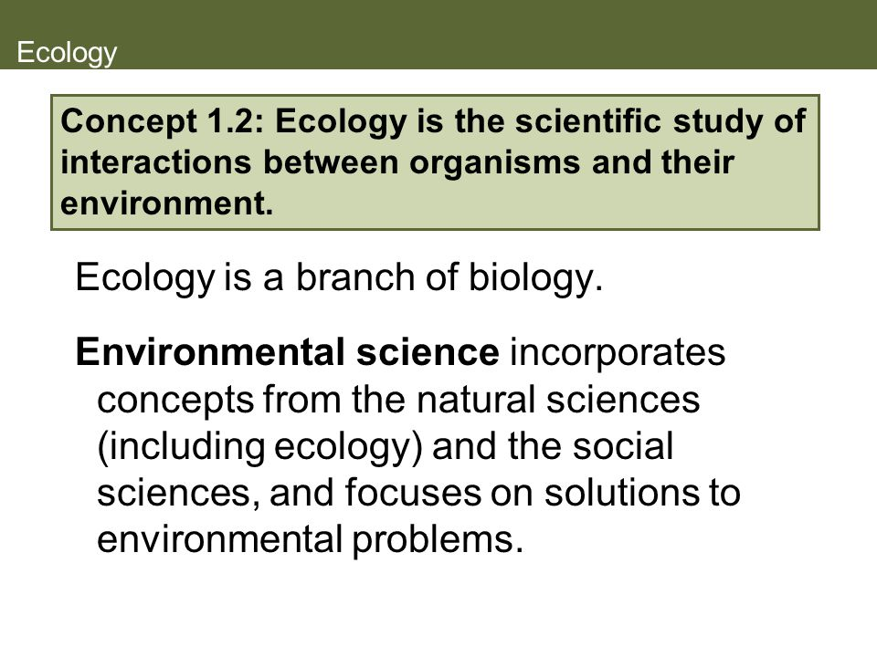 Ecology is a branch of biology.