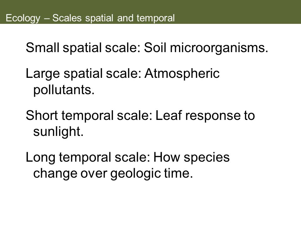 Ecology – Scales spatial and temporal
