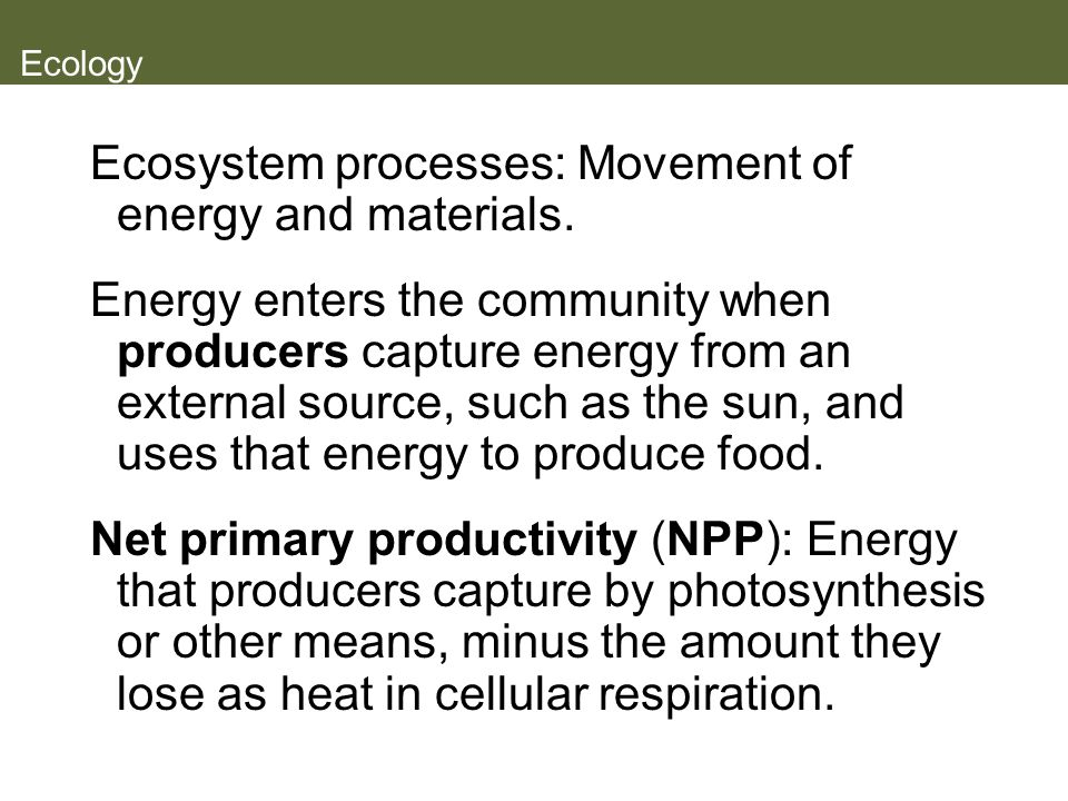 Ecosystem processes: Movement of energy and materials.