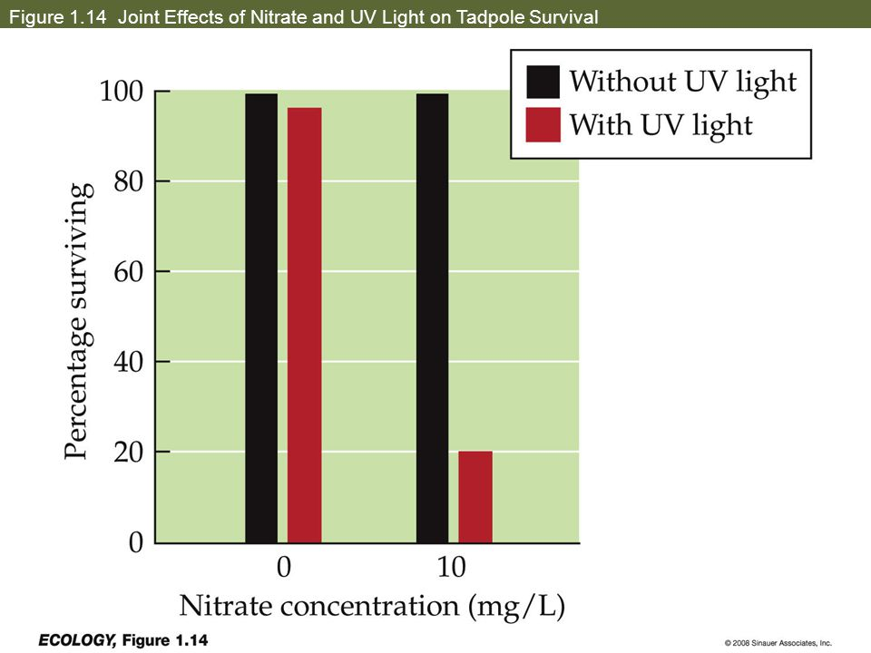 Figure 1.14 Joint Effects of Nitrate and UV Light on Tadpole Survival
