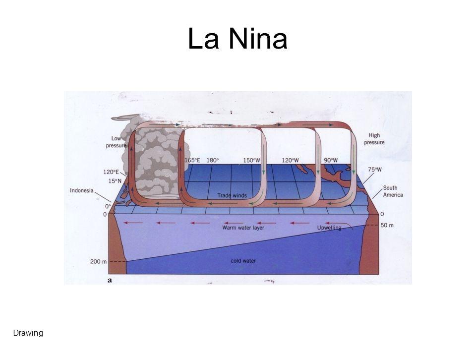 La Nina Drawing