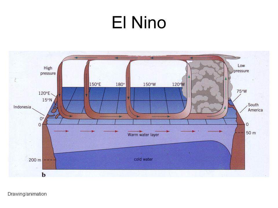 El Nino Drawing/animation