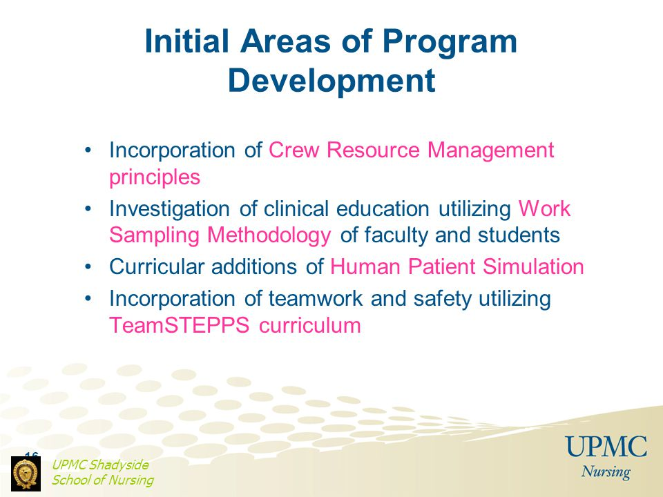Initial Areas of Program Development