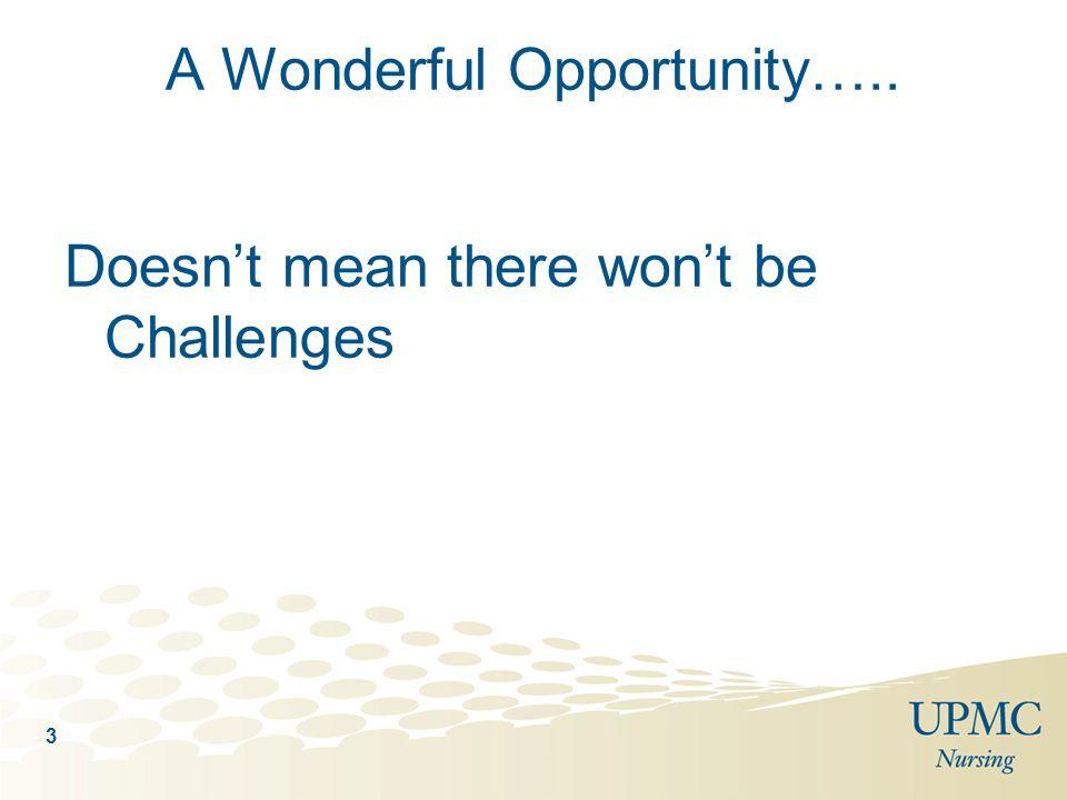 A Wonderful Opportunity…..