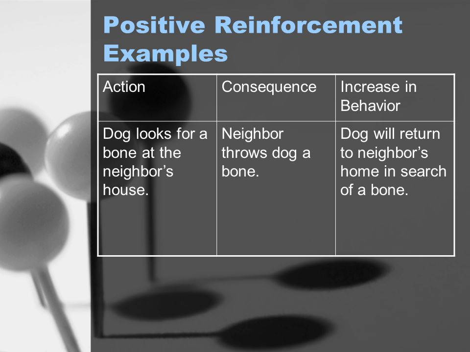 Positive Reinforcement Examples