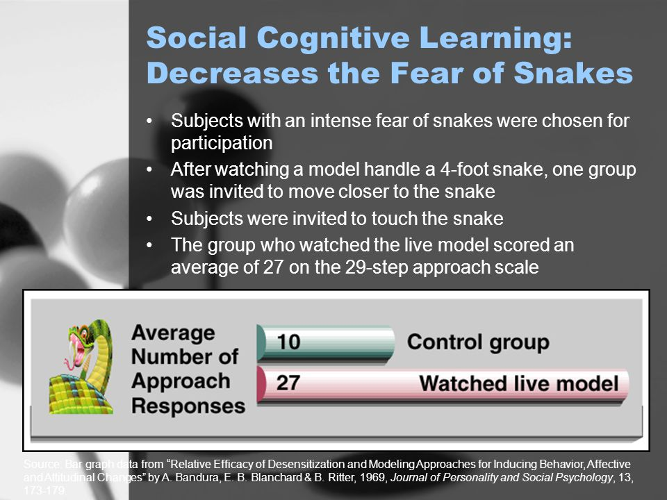 Social Cognitive Learning: Decreases the Fear of Snakes