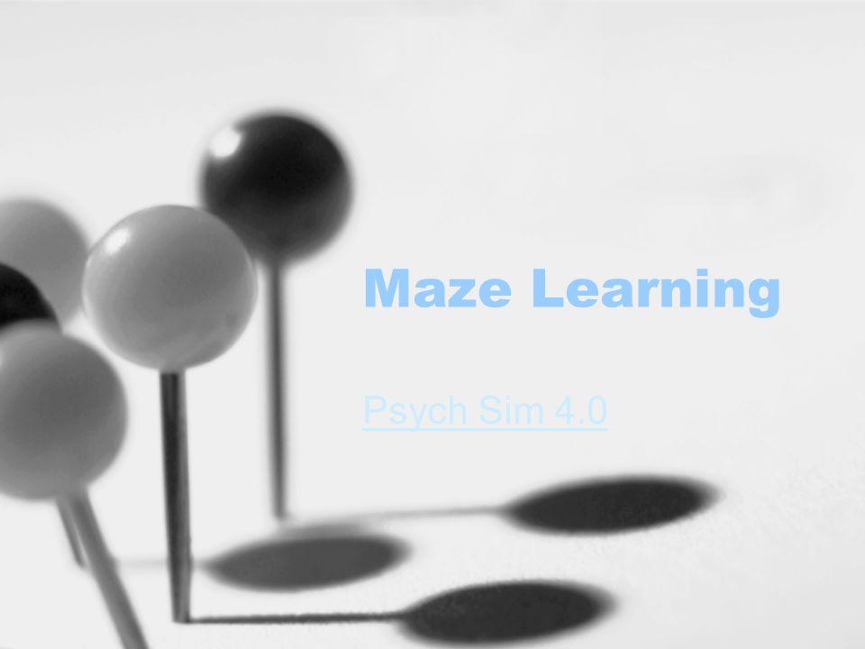 Maze Learning Psych Sim 4.0