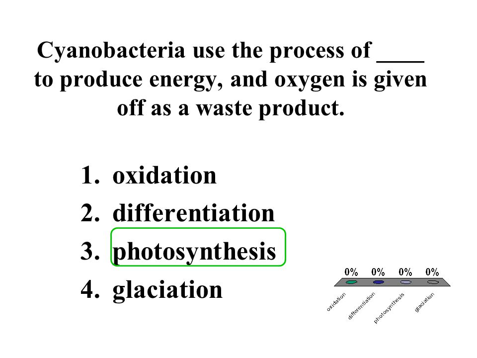 oxidation differentiation photosynthesis glaciation