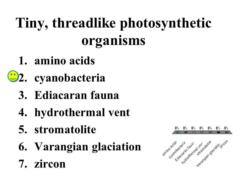 Tiny, threadlike photosynthetic organisms