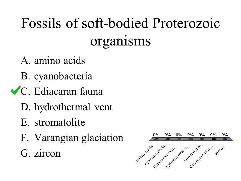 Fossils of soft-bodied Proterozoic organisms