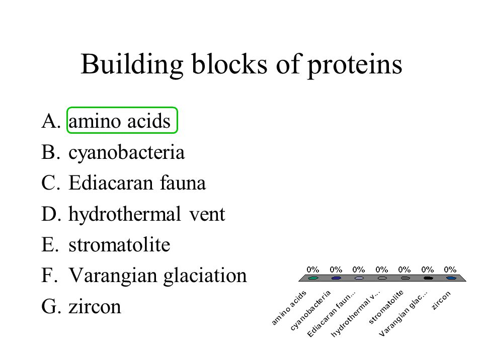 Building blocks of proteins