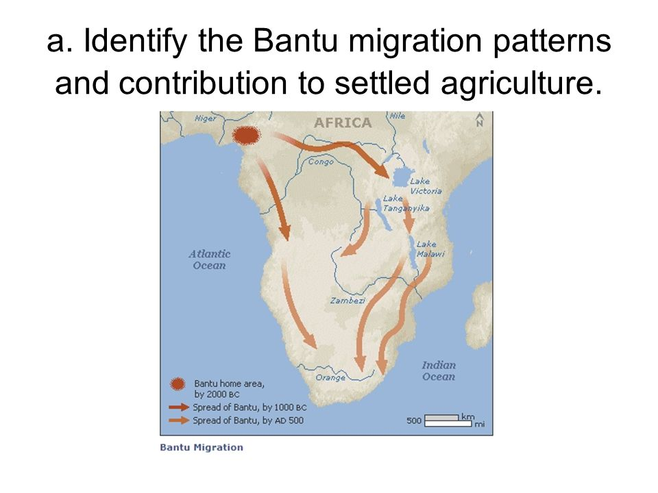 a. Identify the Bantu migration patterns and contribution to settled agriculture.