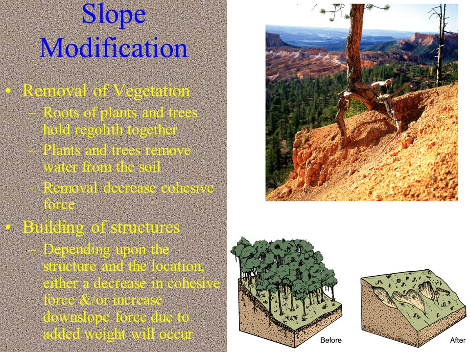Slope Modification Removal of Vegetation Building of structures