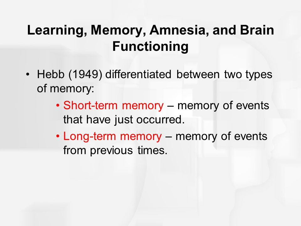 Learning, Memory, Amnesia, and Brain Functioning