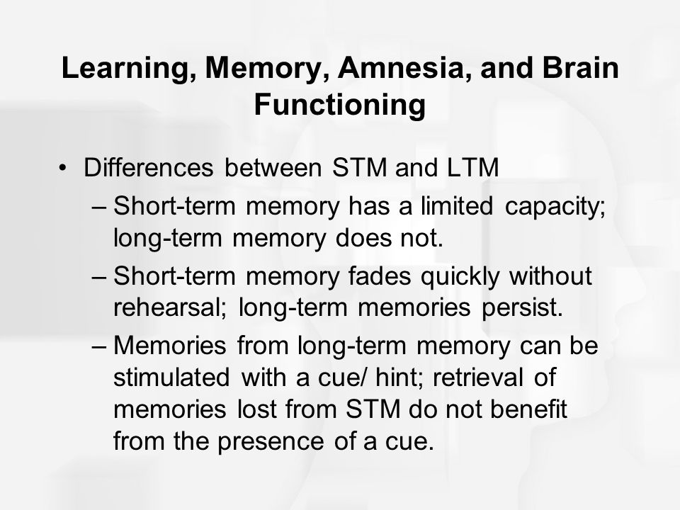 Differences between stm and ltm
