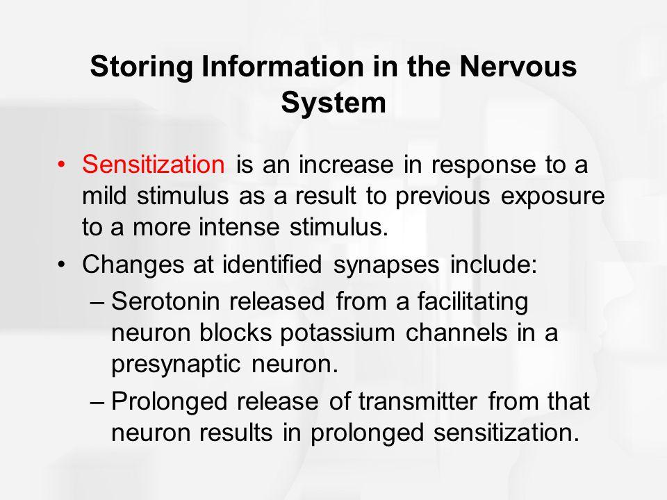 Storing Information in the Nervous System
