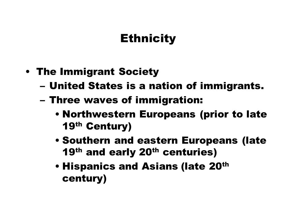Ethnicity The Immigrant Society