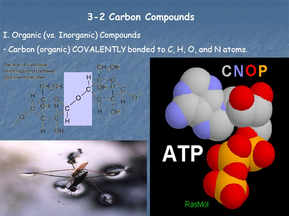 3-2 Carbon Compounds I. Organic (vs. Inorganic) Compounds