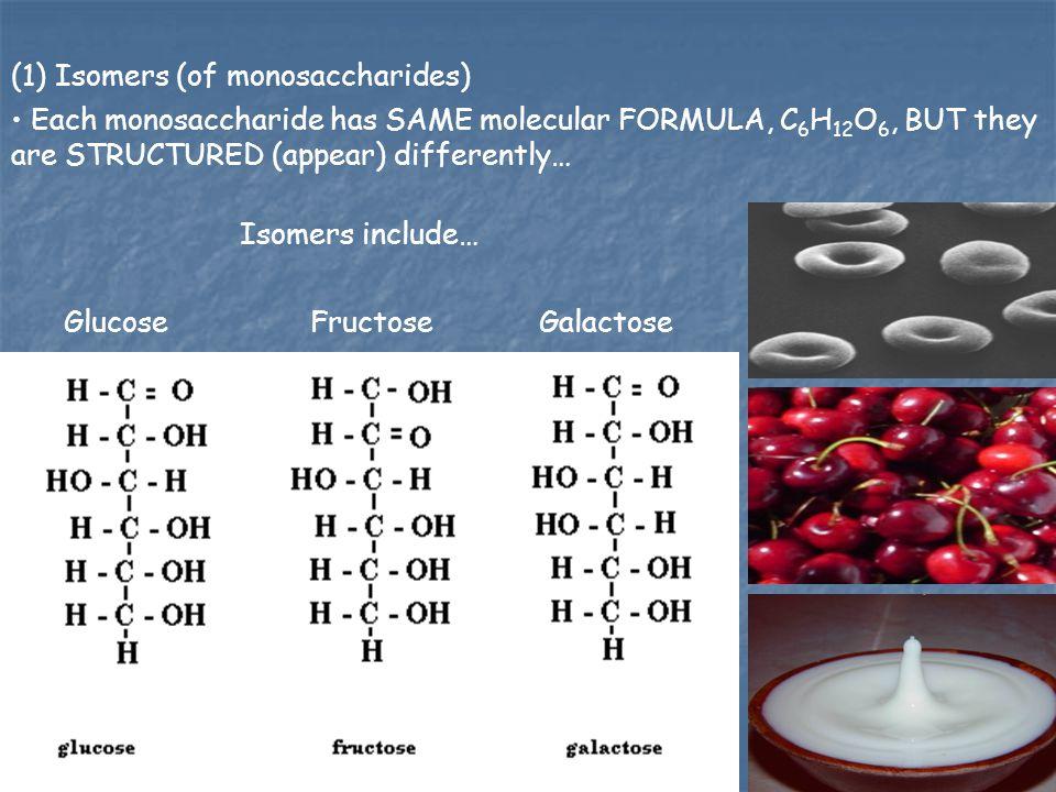 (1) Isomers (of monosaccharides)