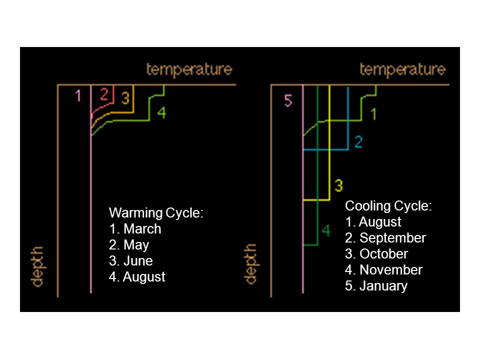 Warming Cycle: 1. March. 2. May. 3. June. 4. August. Cooling Cycle: 1. August. 2. September. 3. October.