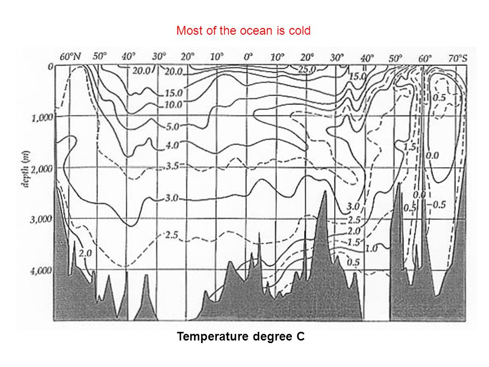 Most of the ocean is cold