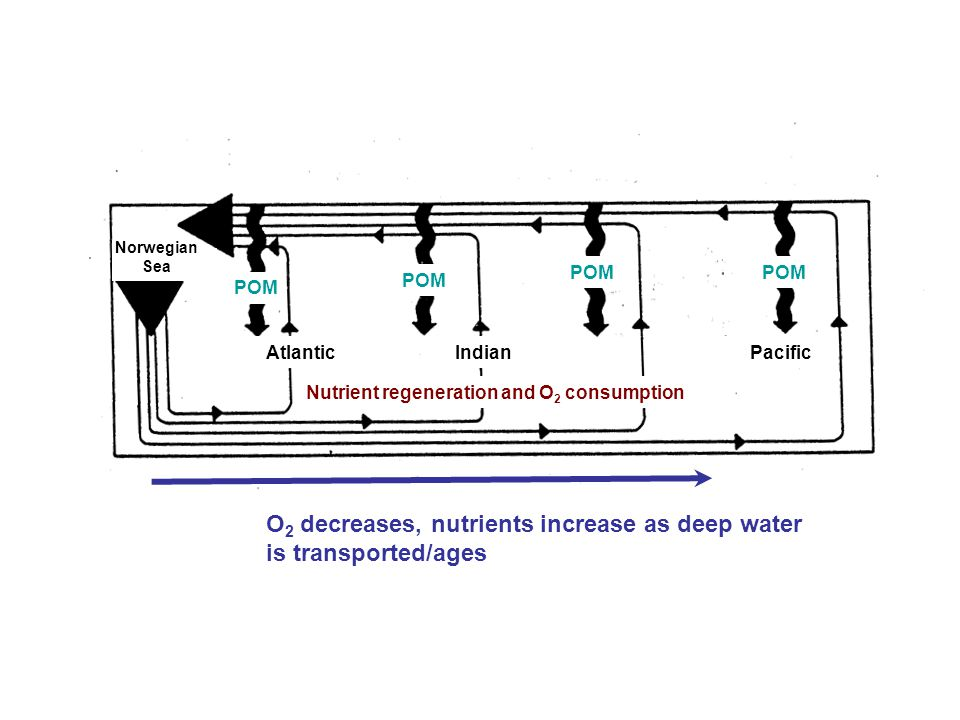 O2 decreases, nutrients increase as deep water is transported/ages