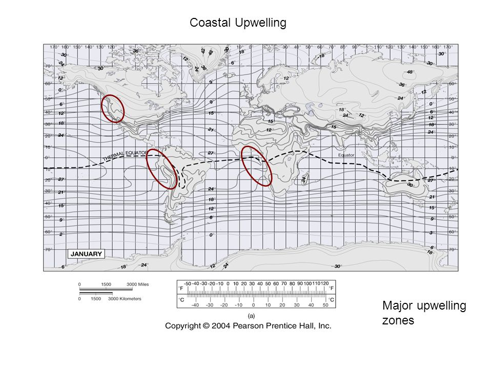 Coastal Upwelling Major upwelling zones