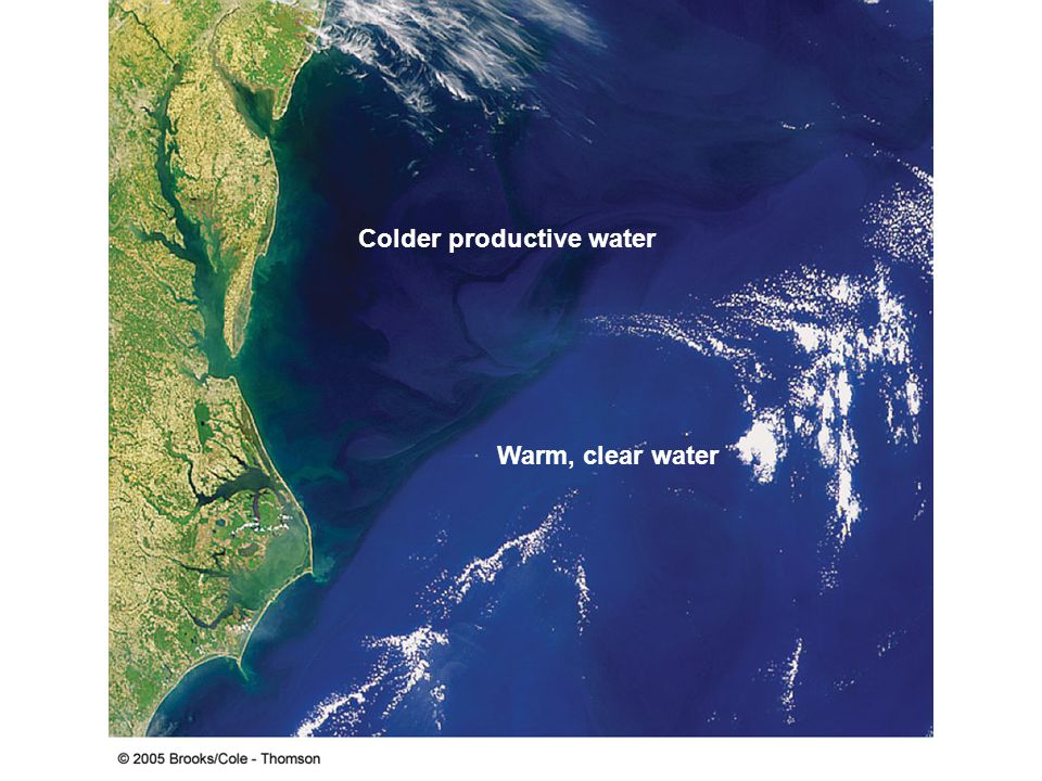 Colder productive water