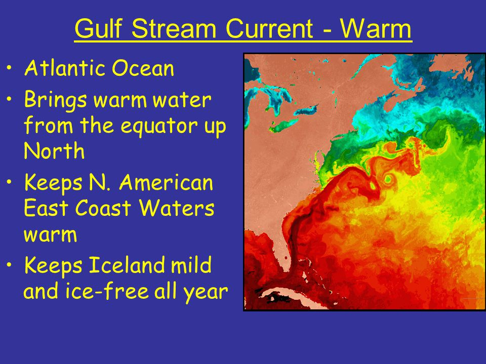 Gulf Stream Current - Warm