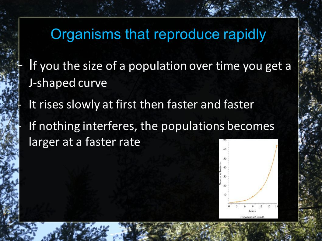 Organisms that reproduce rapidly