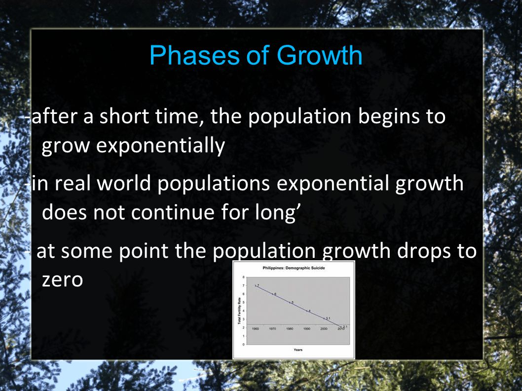 Phases of Growth -after a short time, the population begins to grow exponentially.