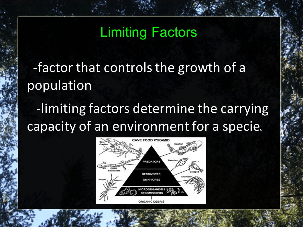 -factor that controls the growth of a population